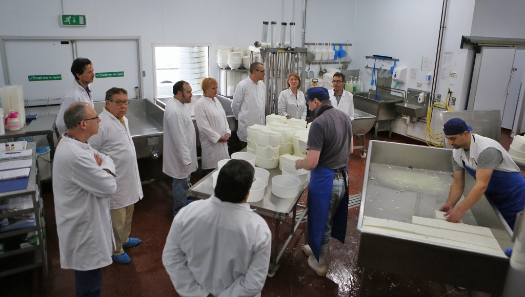 A tour of the dairy to see how we do it on a larger scale